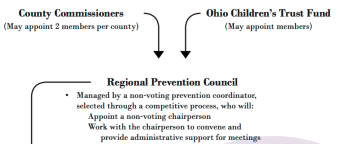 "This screenshot is from the Ohio Children's Trust Fund website. As I recall the ""prevention coordinator"" was one of the couple in the ""3 Ohio Nonprofits"" I had looked at."