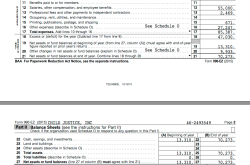 ChildJusticeInc in DC, EIN# 462593549, FY2015 Form 990EZ ** from CJI website [Salaries=55K not 60K, Ln21 matches Page2 top amt) ~ SShot 2017July12@5.16.39 PM