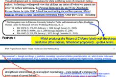 RWJF Program Results Rpt Jan 28, 2014 (3 grants, Fragile Families Study) --SShot 2018Feb7 Wed @7.04.56 PM